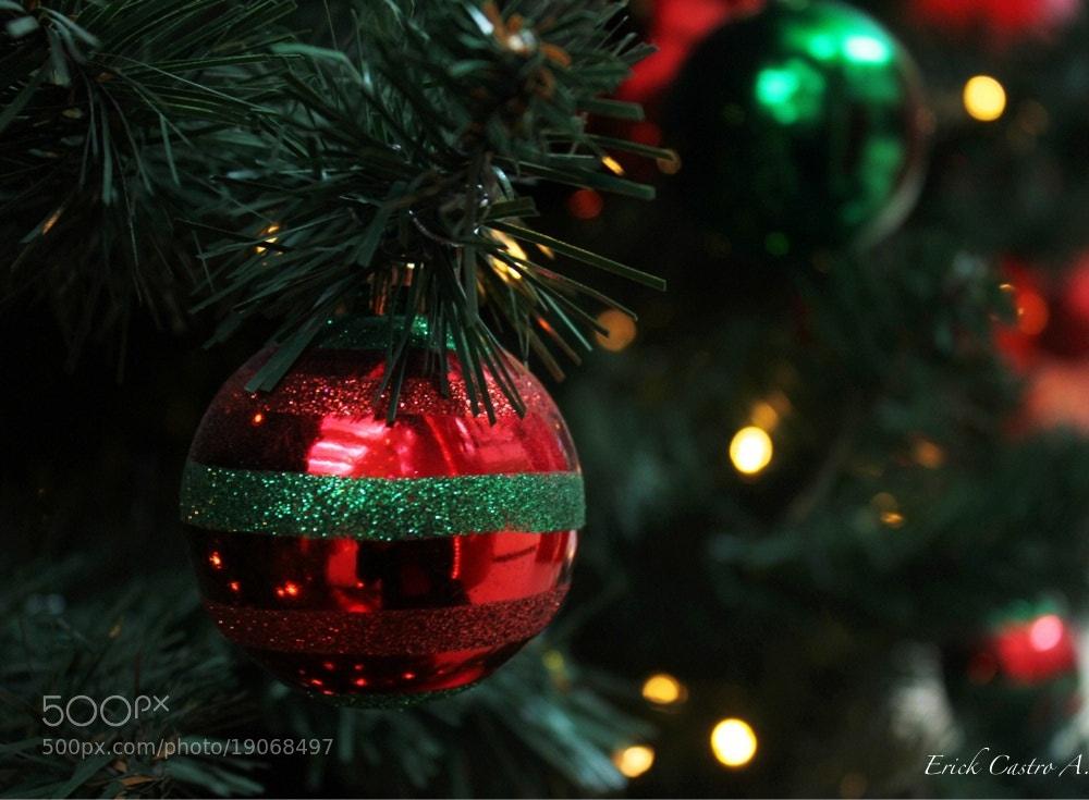 Photograph Navidad 1 by Erick Castro Alvarado on 500px