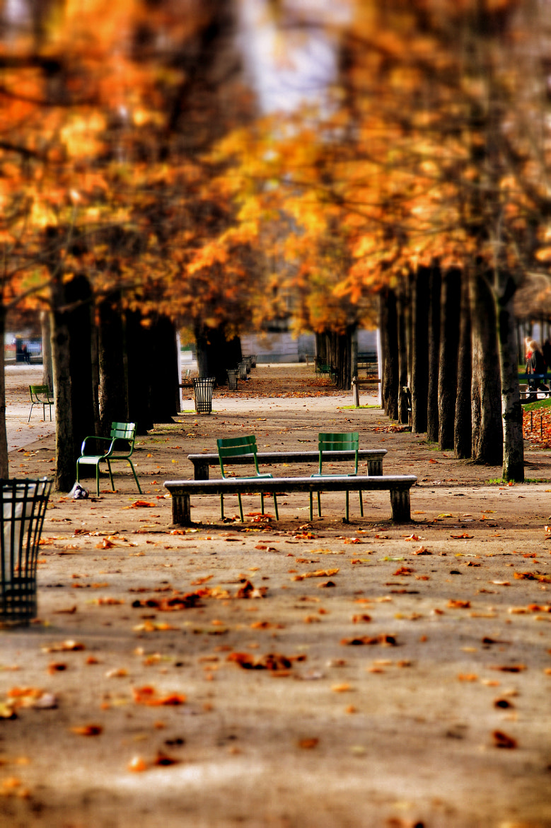 Photograph Empty chair by Stéphane Jean on 500px