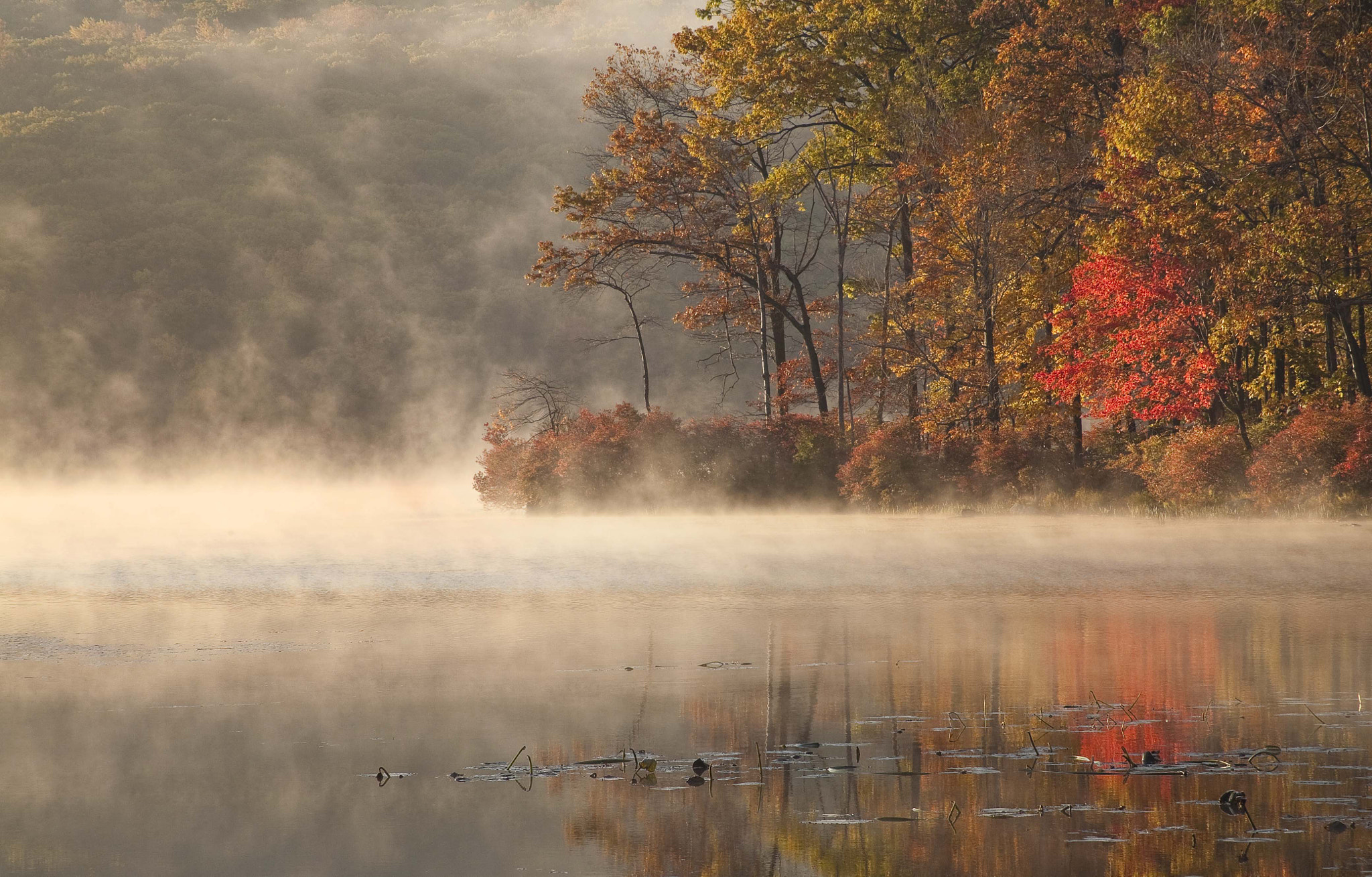 Photograph Golden Morning, Hudson Valley, NY, 2008 by Christopher Wisker on 500px
