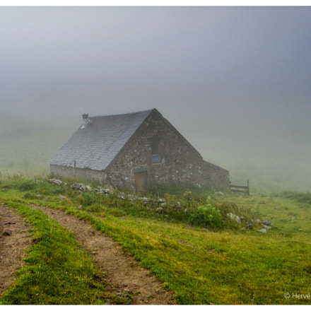 Foggy morning in the, Canon POWERSHOT A710 IS