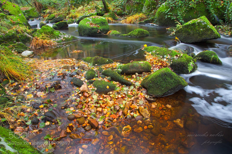 Photograph el Edo y sus otoños... by Mercedes López Rubín on 500px