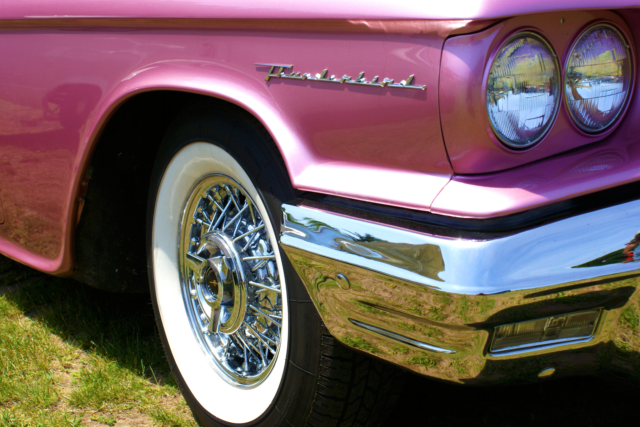 Photograph Pink Thunderbird by Leonard Rosenfield on 500px
