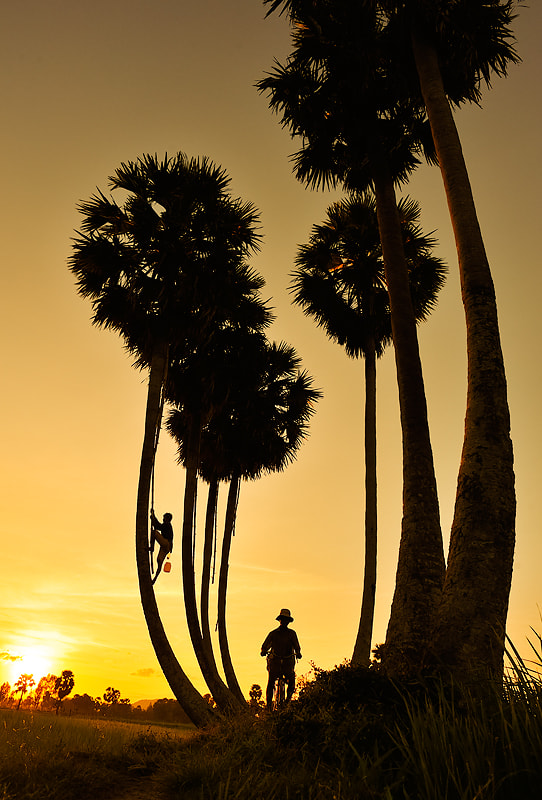 Photograph An Giang Viet Nam by NguyenHoangNam on 500px