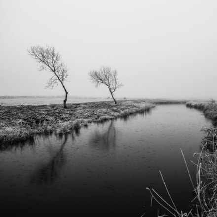 Winter time, Canon EOS-1D X