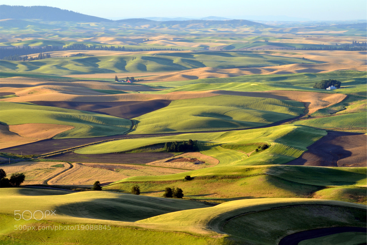 Photograph July afternoon in the Palouse by Ken Carper on 500px