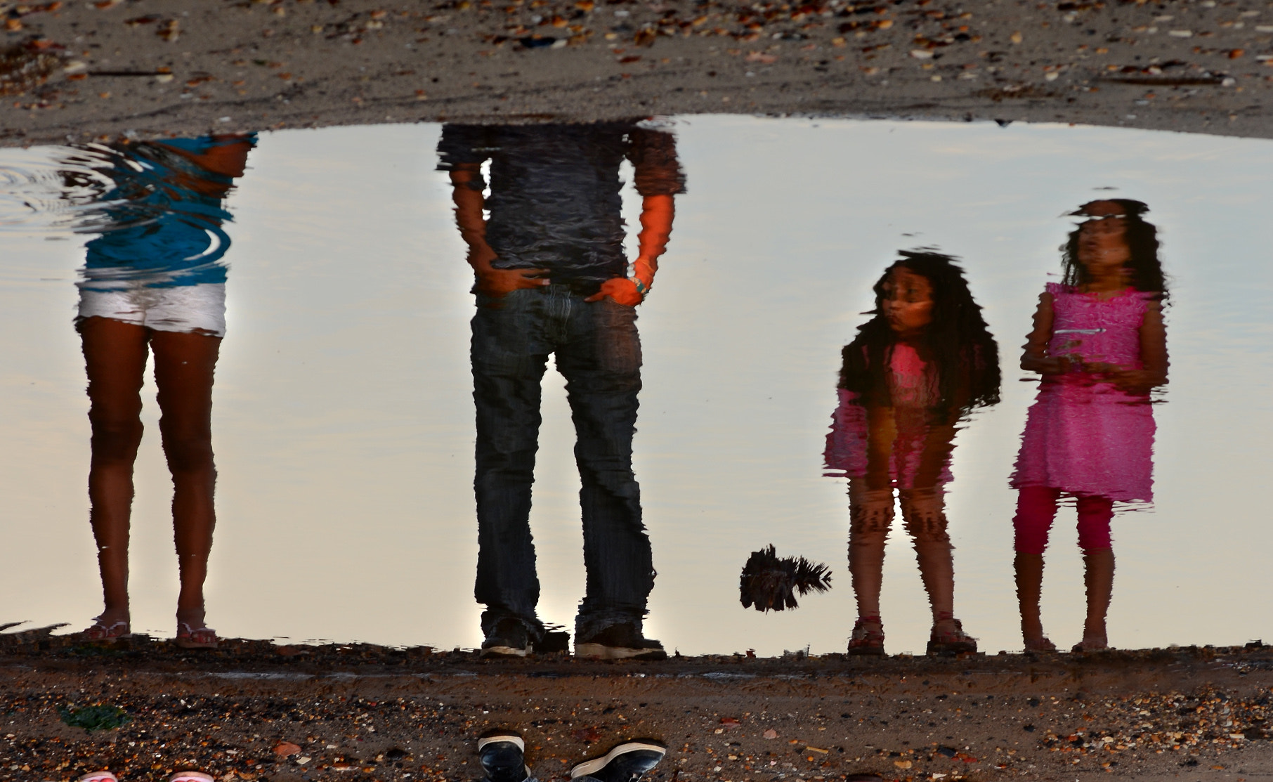 Photograph Puddle Dwellers by Heather  on 500px