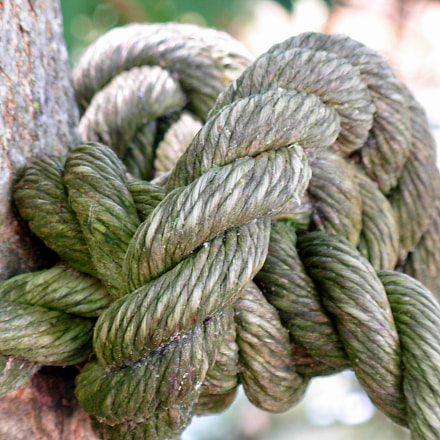 Tied up in knots, Nikon COOLPIX L5