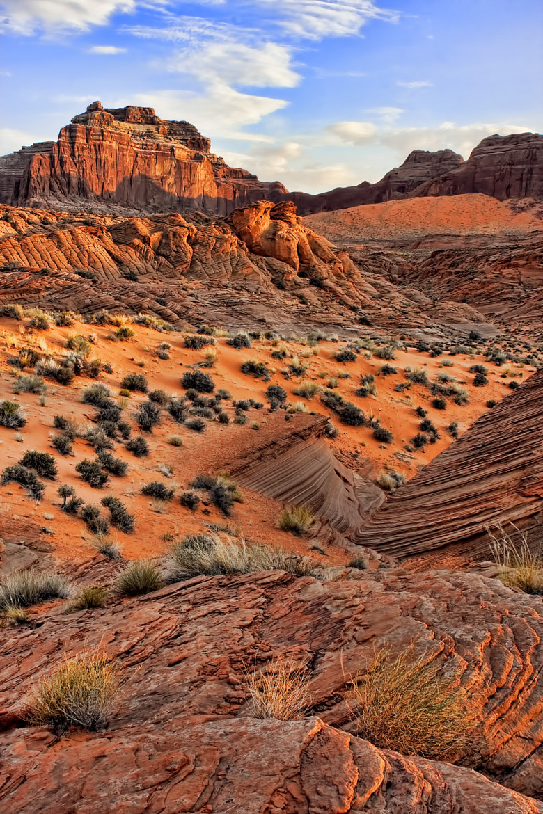 Photograph Face Canyon2 by Chad Stewart on 500px