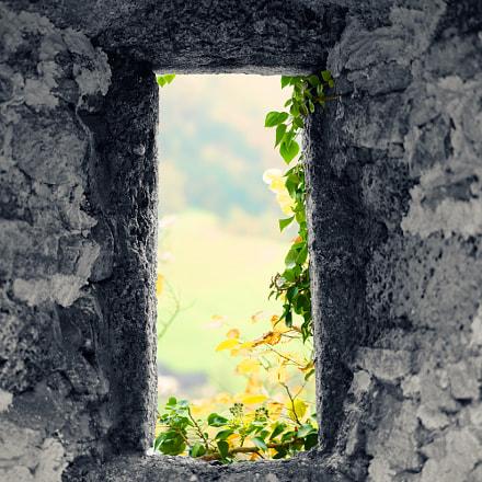 Medieval castle window