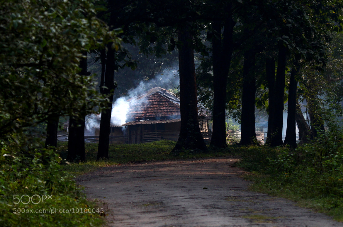 Photograph Home in the Forest by Ravi Meghani on 500px