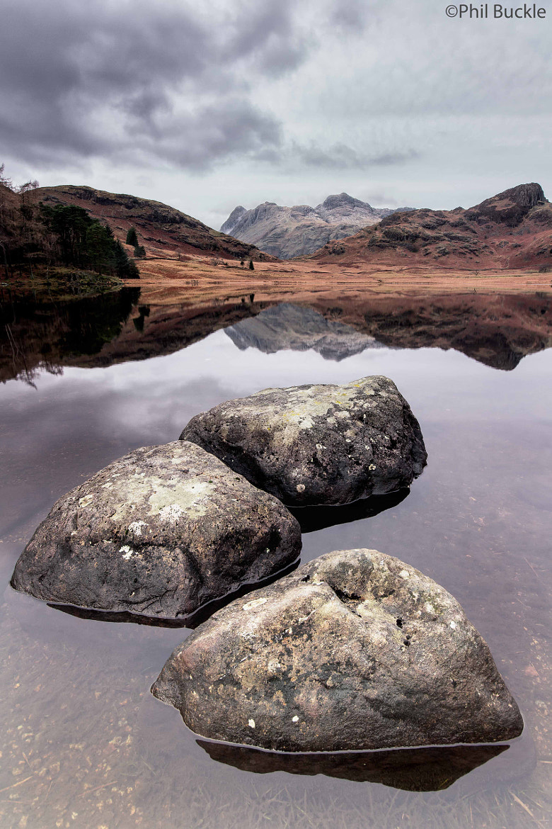 Photograph Blea Tarn Rocks by Phil Buckle on 500px
