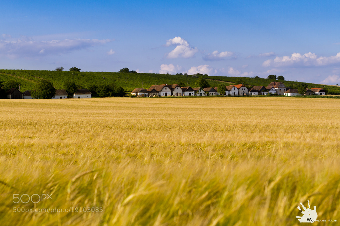Photograph Kellergasse Weinviertel by Wolfgang Hagn on 500px