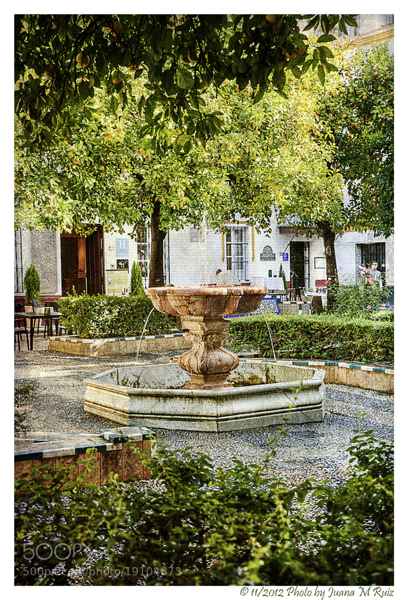 Photograph Isbilia: fountains and orange trees by Juana Maria Ruiz on 500px
