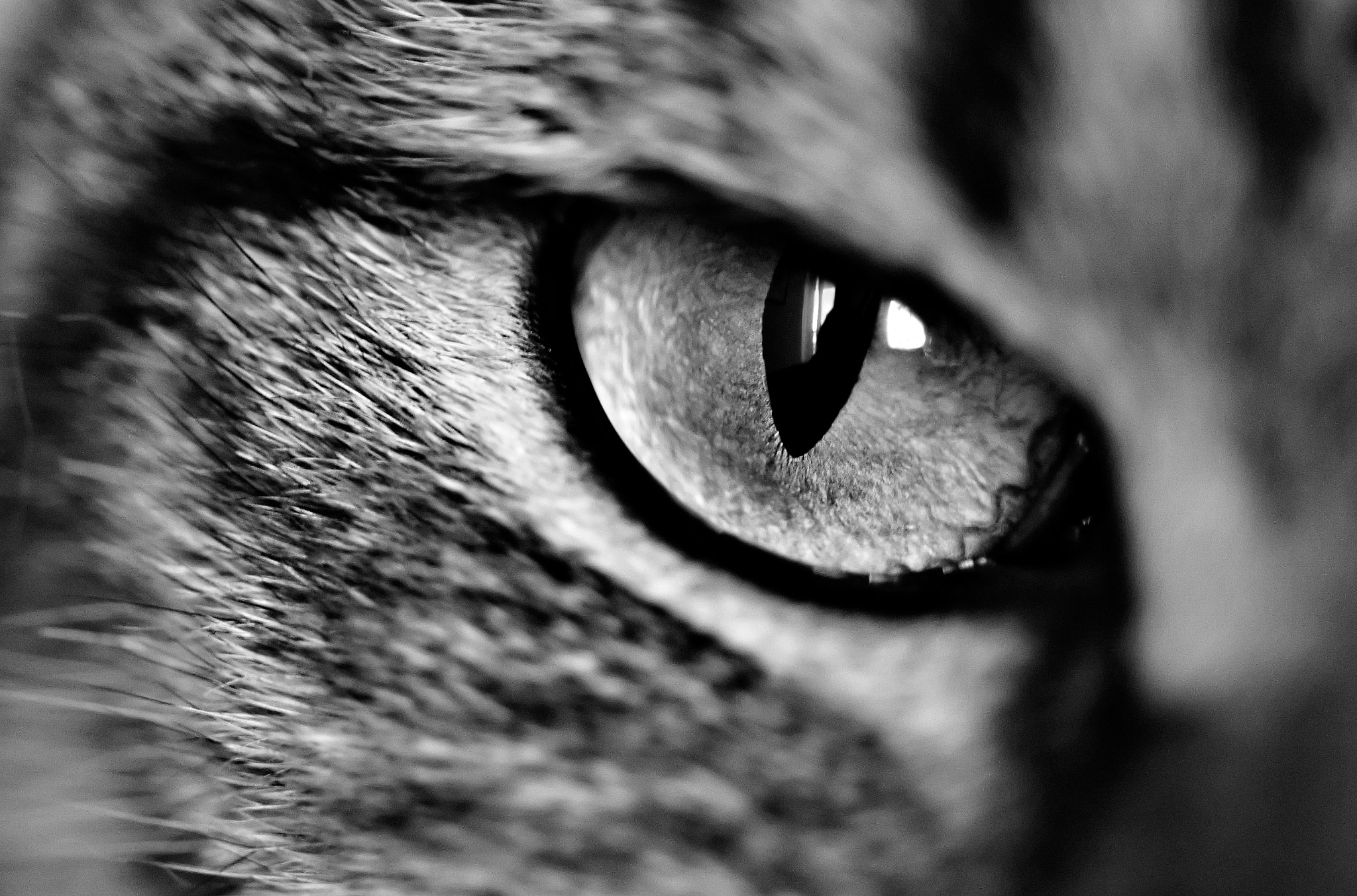 Photograph cataract by Charlie Man on 500px