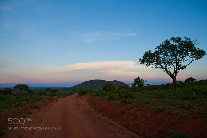 Photograph Sunset in Tsavo East Kenya by Stefanie Lategahn on 500px