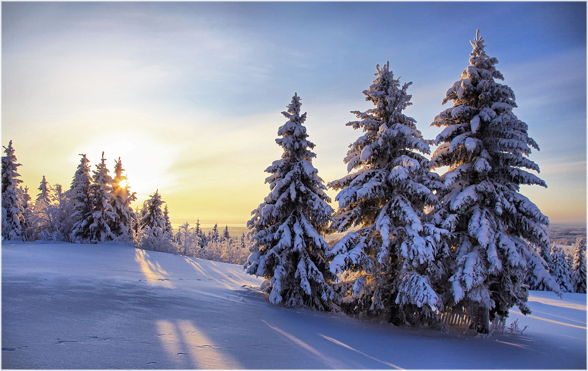 Photograph Cold winter morning ... by Valtteri Mulkahainen on 500px