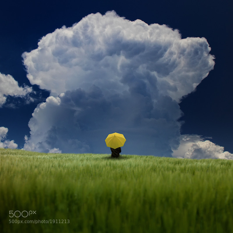 Photograph Alone in the Storm by Carlos Gotay on 500px