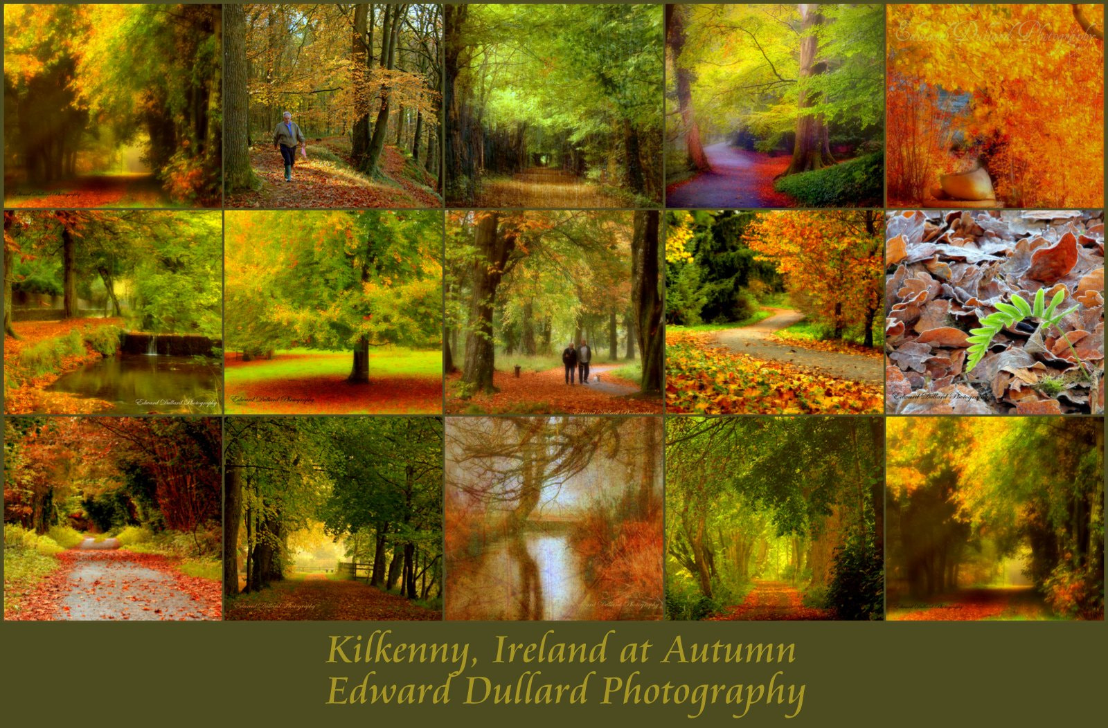 Photograph Autumn collection. by EDWARD DULLARD on 500px