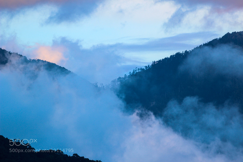 Photograph Morning has broken by Boris Smokrovic on 500px