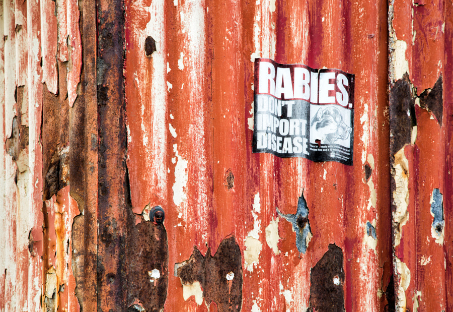 Rabies sign