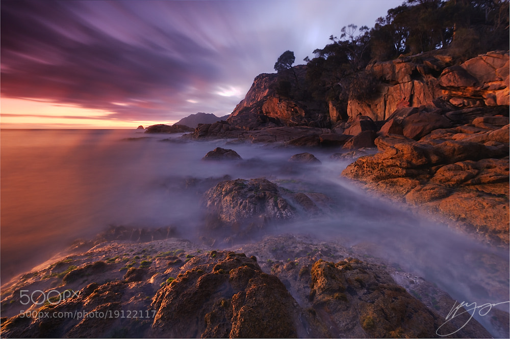 Photograph Streaky Sleepy by Hillary Younger on 500px