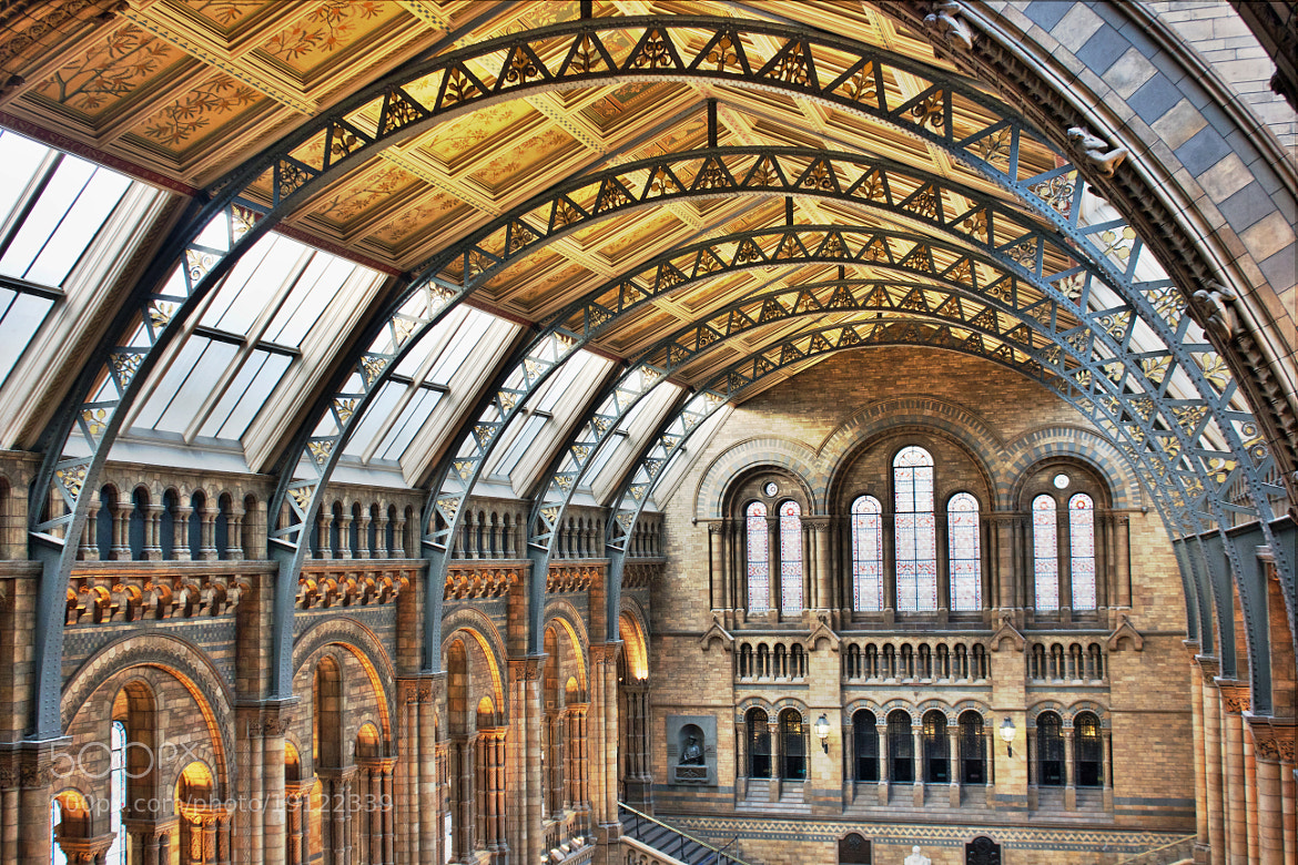 Photograph The Great Museum Hall by Jonathan Hand on 500px