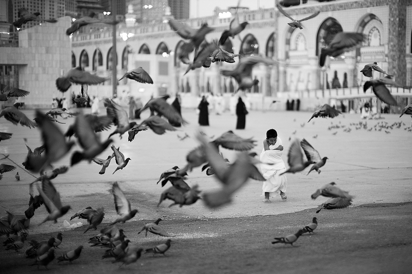 Photograph Playin' With The Pigeons by Ridwan Prasetyo on 500px
