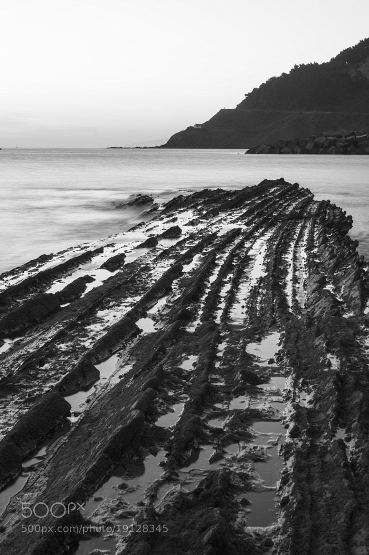 Photograph Flish by Asel Zulaika Campo on 500px