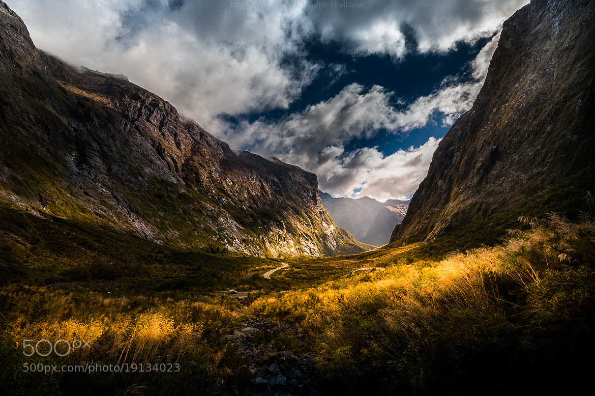 Photograph a road to Milford sound by Coolbiere. A. on 500px