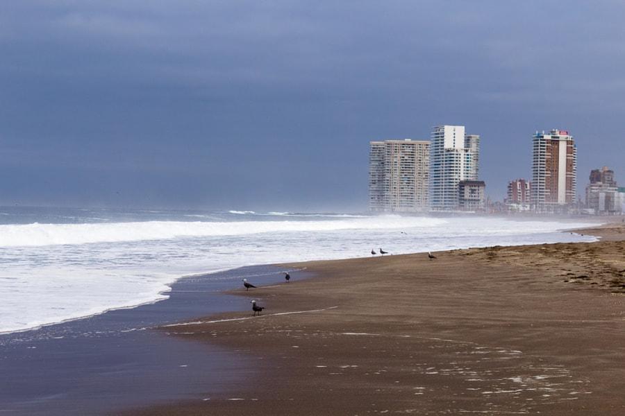 Playa Brava Iquique by Luis Cubillos on 500px.com