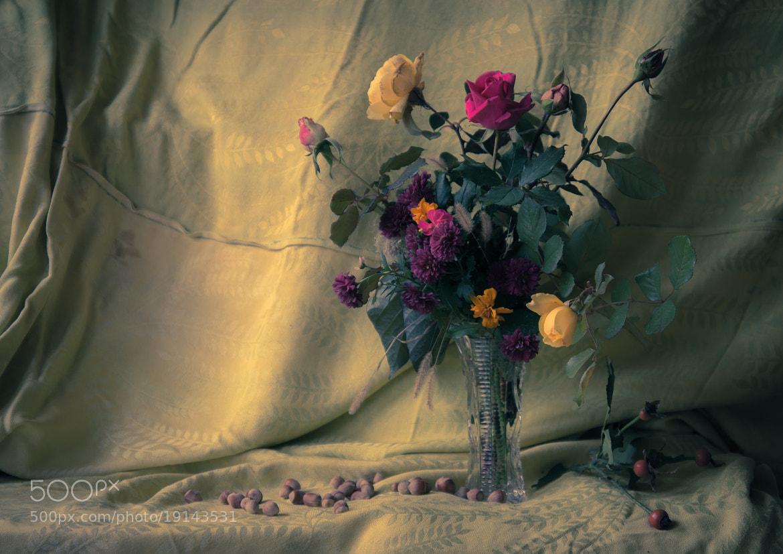 Photograph autumn bouquet by Alexander Ostapenko on 500px