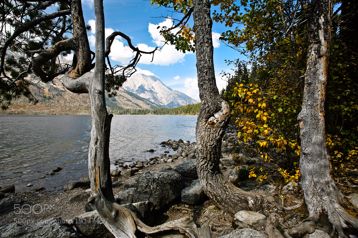 Photograph Lake view - Wyoming by Jack Booth on 500px