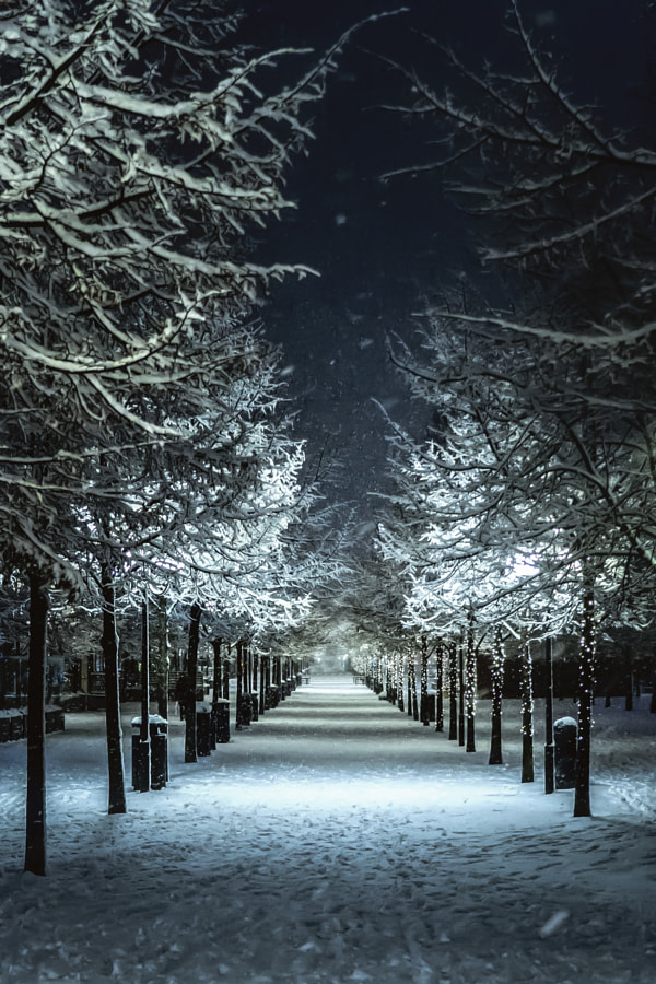 Magical snowy Stockholm. Narnia.