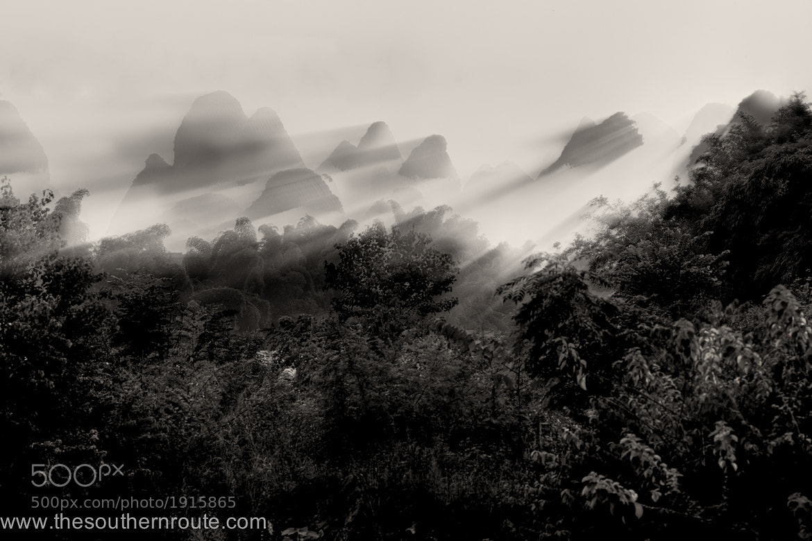 Photograph Jungle bells, jungle all the way by regis boileau on 500px