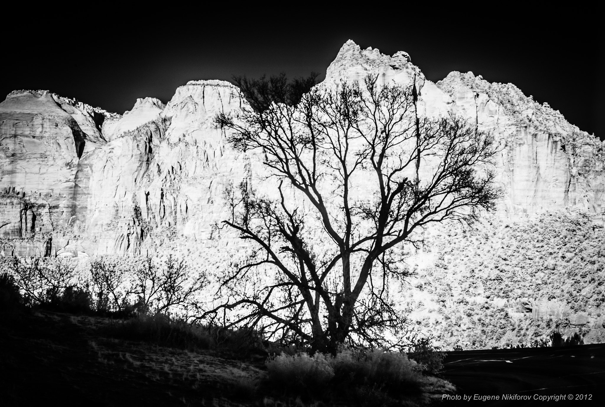 Photograph Zion National Park, infrared by Eugene Nikiforov on 500px