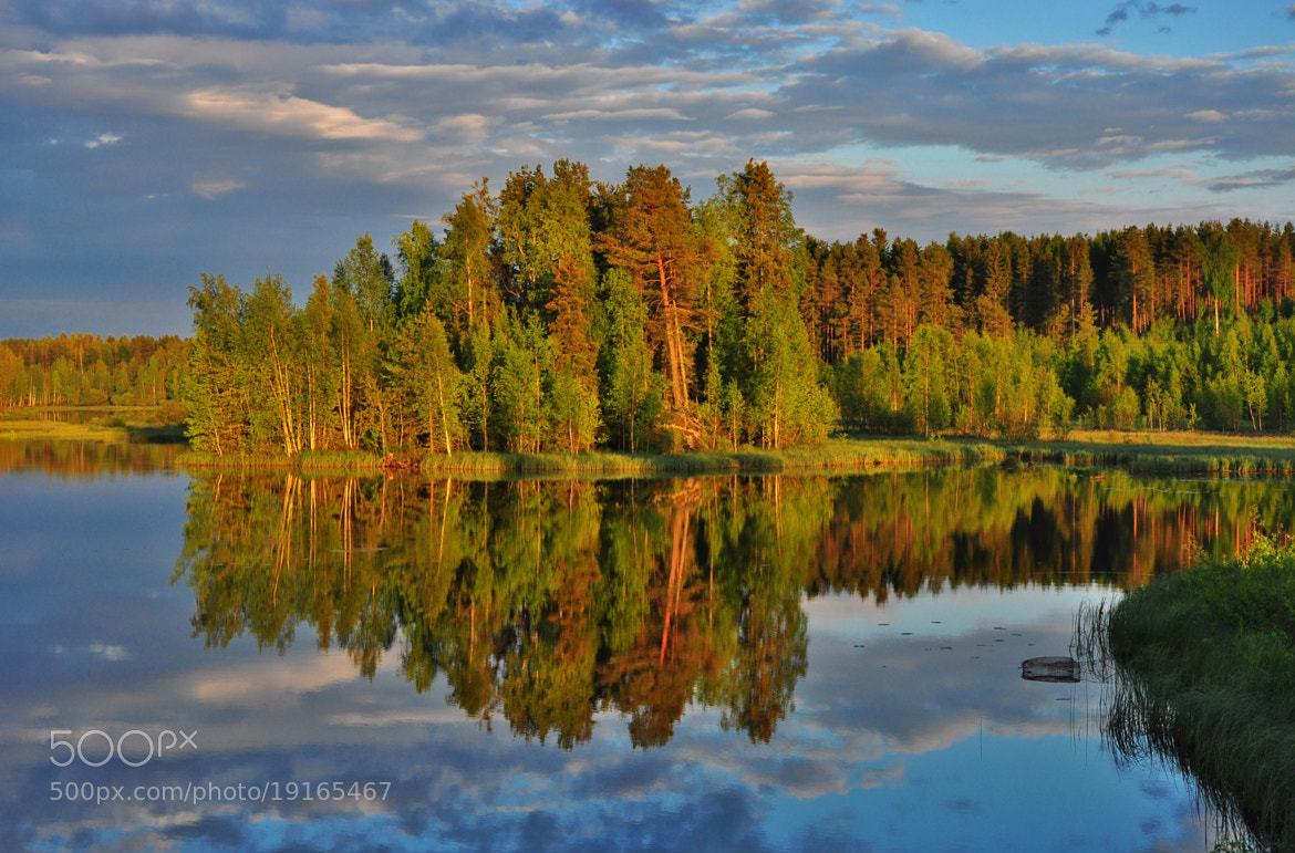 Photograph summer evening by Seppo Autio on 500px