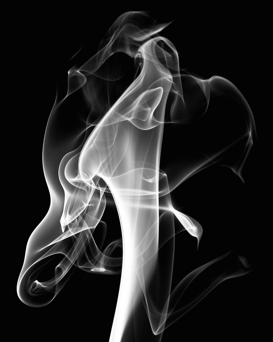 Photograph smoke lilly by Derrick Verkaik on 500px