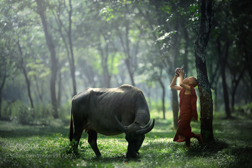 Photograph rest by JD Ardiansyah on 500px