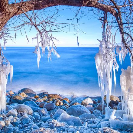 Ice Anyone?