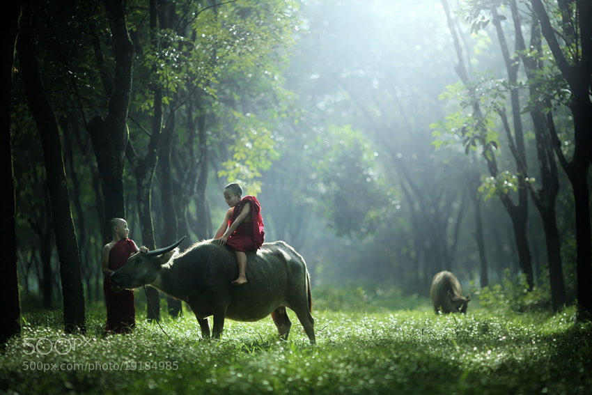 Photograph happy together  by JD Ardiansyah on 500px
