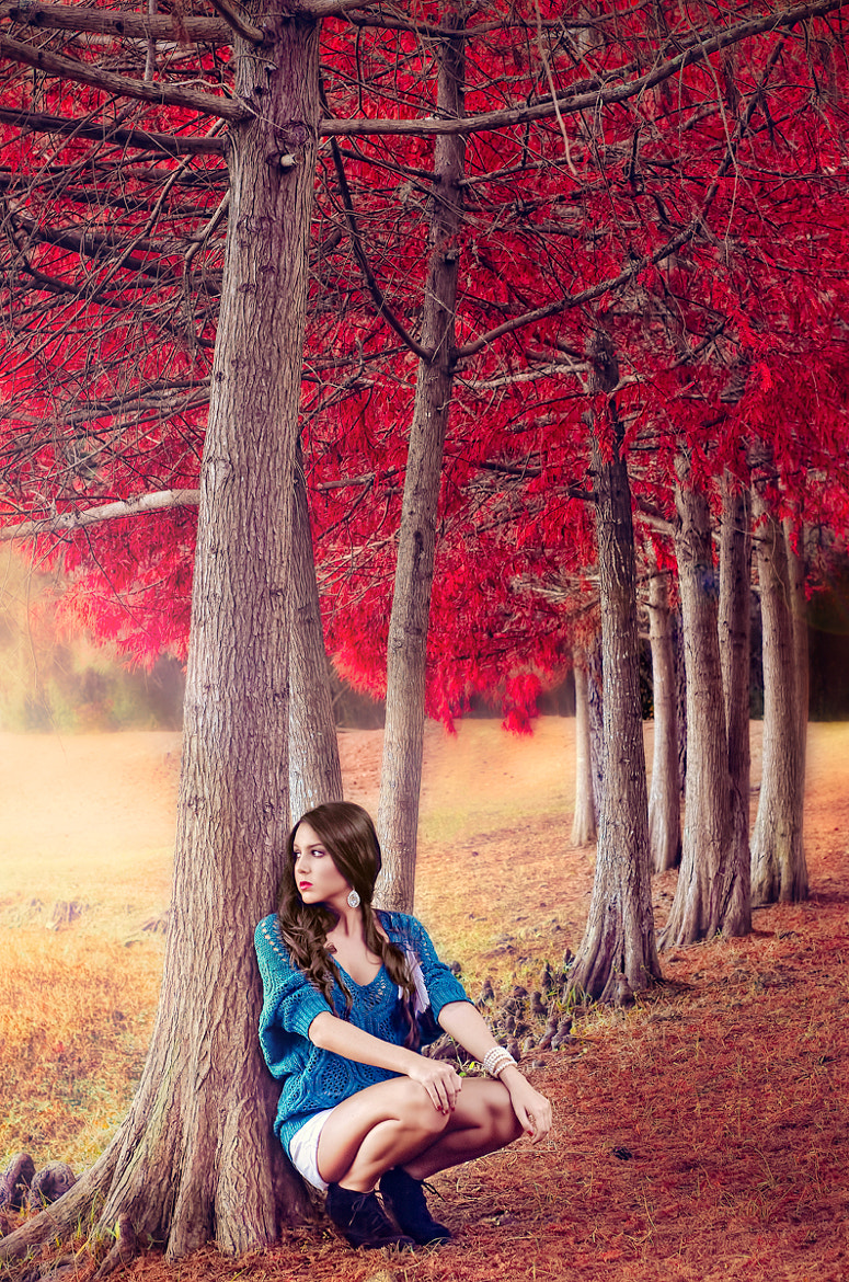 Photograph Fall Dream by Ashley Belanger on 500px
