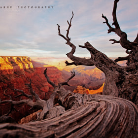 Spectacular Grand Canyon by Kaushik Karne (kaushik246)) on 500px.com