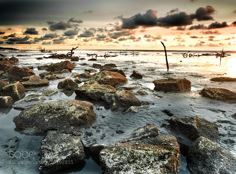 Photograph Pantai Indah by lim theam hoe on 500px
