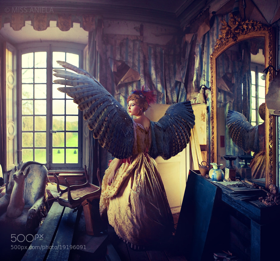 Photograph Girl of prey by Miss Aniela on 500px