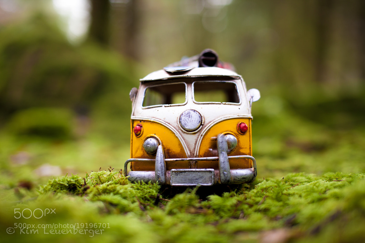 Photograph All We Are Is Just Dust In The Wind by Kim Leuenberger on 500px