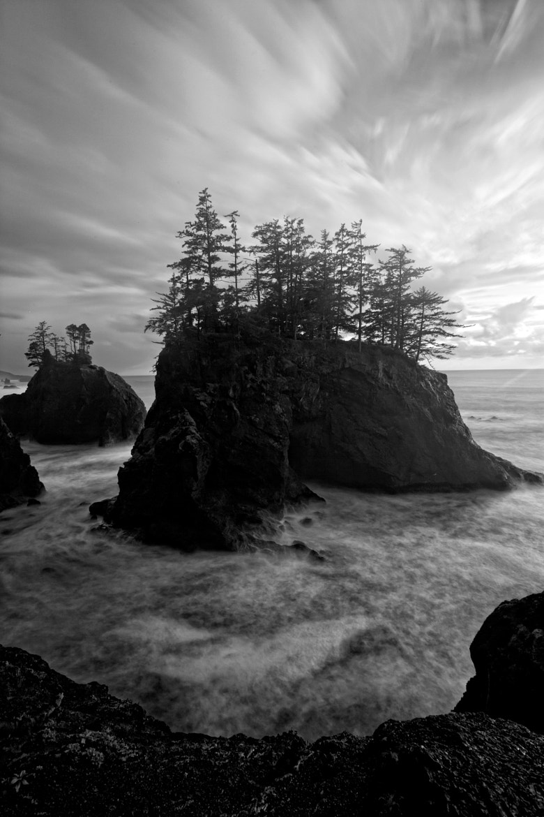 Photograph Oregon Coast by Helminadia Ranford on 500px