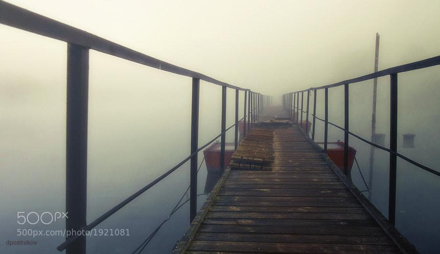 Photograph Туманным утром. by Postnikov Dmitry on 500px