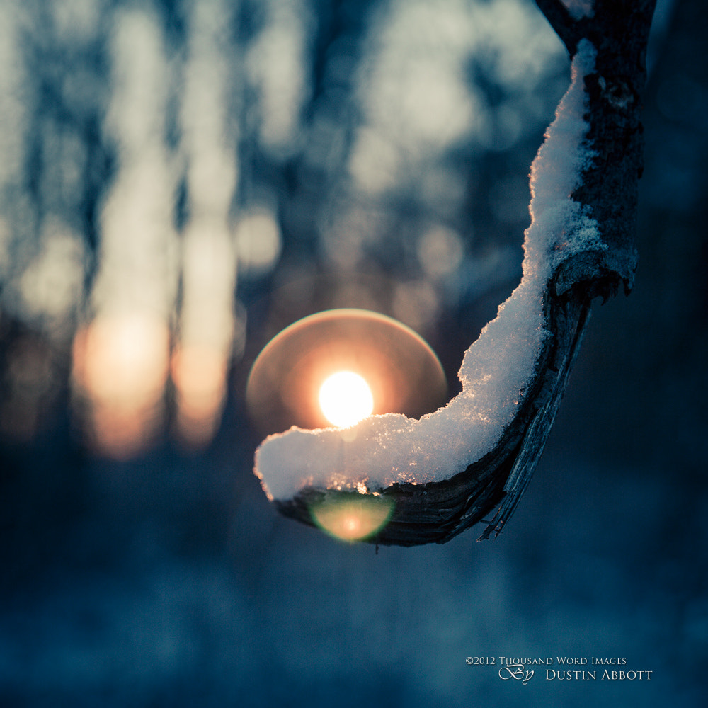 Photograph A Scoop of Sunshine by Dustin Abbott on 500px