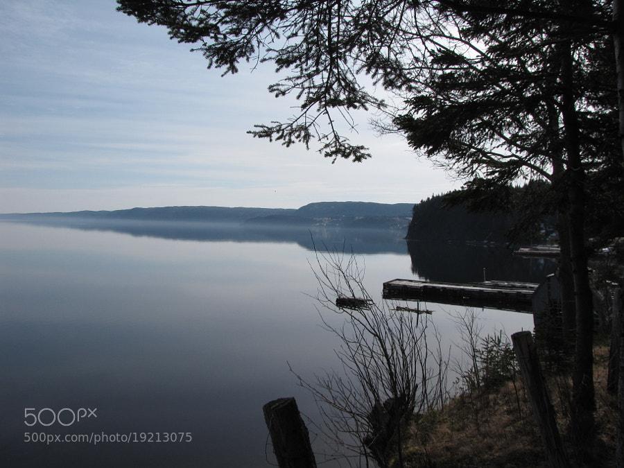 A calm morning looking east from Petley, Random Island, Newfoundland