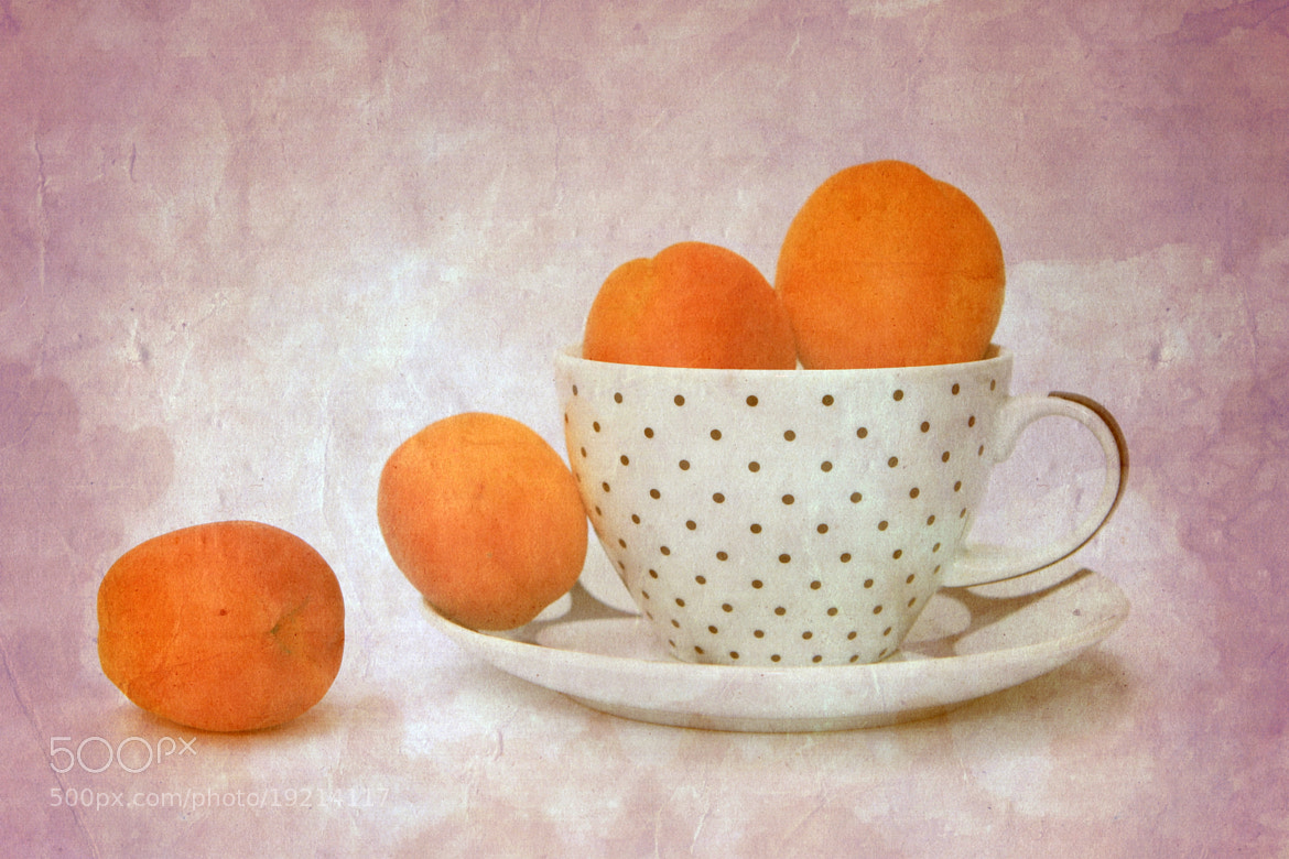Photograph Apricots in a cup by Angela Bruno on 500px